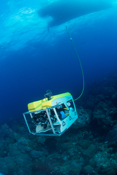 Mohawk ROV cruising above a coral reef with the silhousette of a boat visible above.