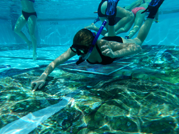 Underwater view of student in snorkel gear pointing at something in the canvas reef picture at the bottom of the pool
