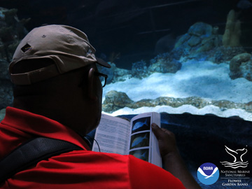 Looking over the shoulder of a teacher using a fish ID book in front of an aquarium window.