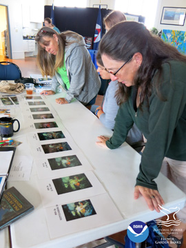 Teachers looking at a time series of reef photos to see if they can detect changes on the reef over time