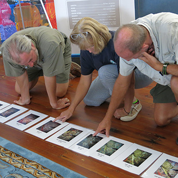 Three teachers looking at a time series of reef photos laid out on the floor