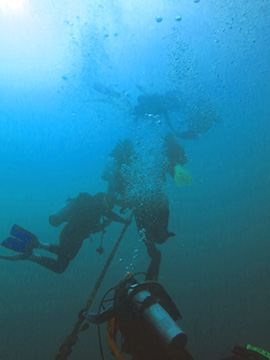 Six divers holding on to a mooring line underwater as they slowly surface.