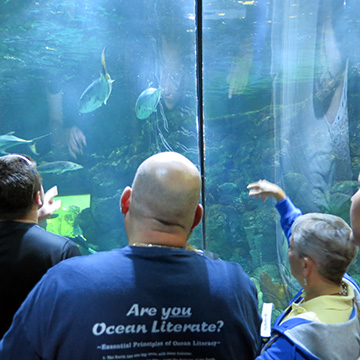 Kelly (right) pointing at fish in the Caribbean aquarium exhibit as two teachers (to her left) look on.