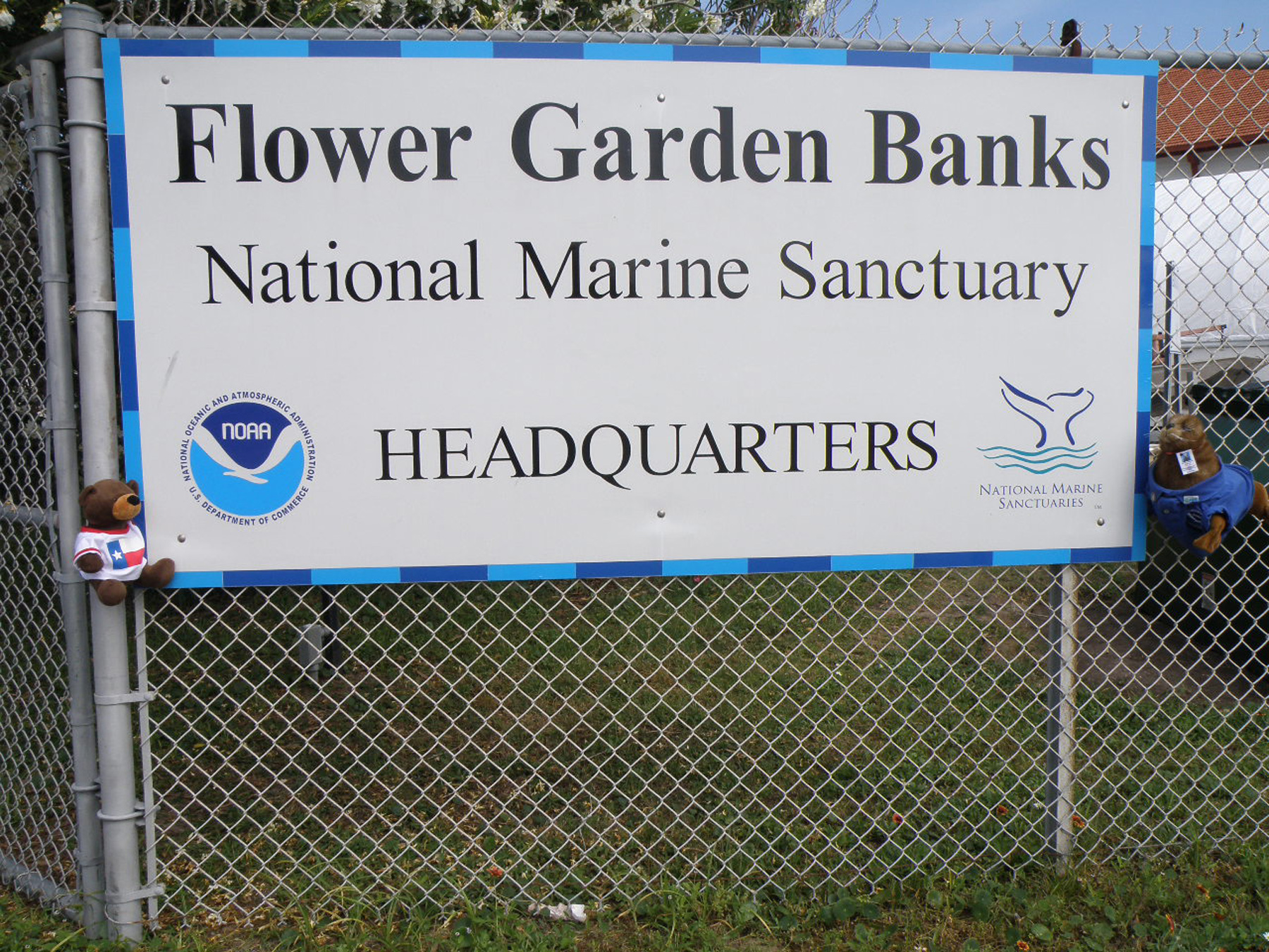 Flower Garden Banks National Marine Sanctuary Wildlife Expo Images
