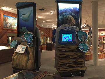 Traveling exhibit on display in Brazosport Museum of Natural Science