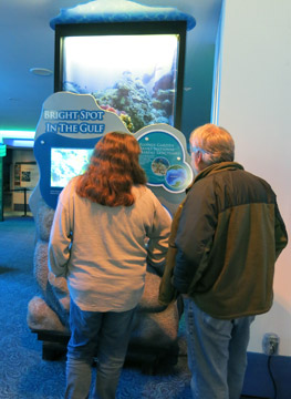 Two guests viewing the Bright Spot in the Gulf section of the exhibit