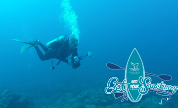 Diver with an underwater camera setup swimming over the reef. Get Into Your Sanctuary logo in corner.