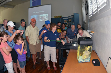 Crowd gathered around a small fish tank to watch a lionfish feed.