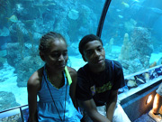 Two students watching fish and divers in the aquarium.