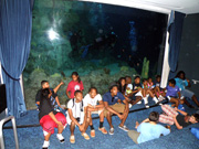 Group seated in front of a viewing panel at the aquarium as the divers swim behind them.