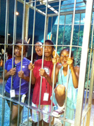 Students inside a shark cage at the aquarium.