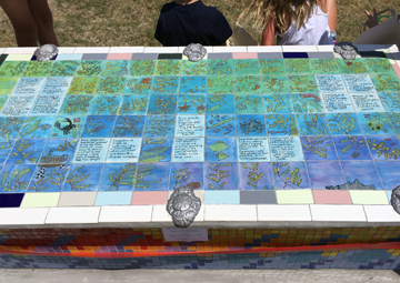 Close up view of the tilework created by the students to teach visitors about sargassum