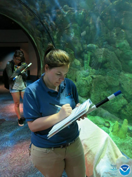 Two students practicing fish survey methods from inside a tunnel of a large aquarium exhibit.