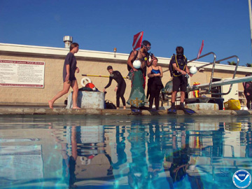 Divers standing at the edge of a swimming pool ready to jump in with all of their survey gear.