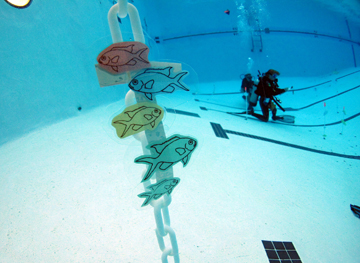 A scuba diver in a pool with fish pictures attached to a floating plastic chain in the foreground.