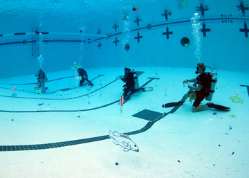 Several scuba divers kneeling on the bottom of a pool with fish pictures on plastic floating chains located at random locations around them