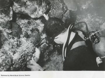 Diver looking at corals at the Flower Garden Banks in 1967