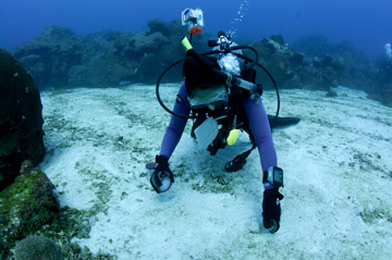 A diver using a plastic container to collect sediment from the sea floor.