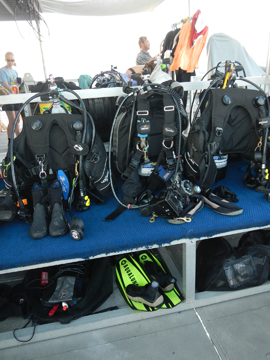 Dive gear lined up on R/V MANTA dive bench