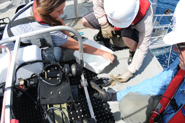 Three people gathered around an ROV to collect a small sample of coral from the manipulator arm.