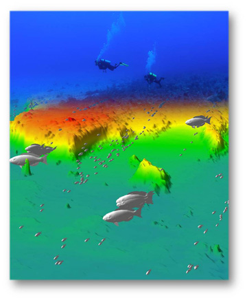 Sonar image showing fish icons in different sizes to indicate size and distribution