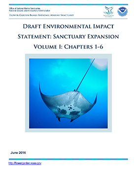 Cover image of Draft Environmental Impact Statement