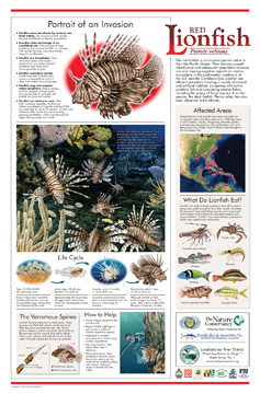 Image of Nature Conservancy poster about lionfish