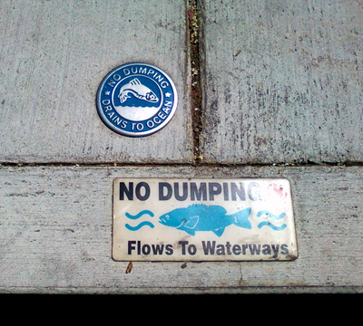No dumping signs glued to the pavement by a storm drain.
