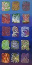 Colorful painting of deepwater animals and plants of Flower Garden Banks National Marine Sanctuary