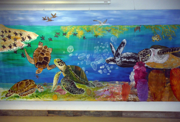 Sea turtles of the Gulf of Mexico mural on the wall at TIRN offices