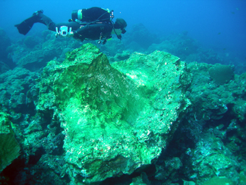 A scuba diver swimming above an overturned boulder of coral that is probably 4 times his size.