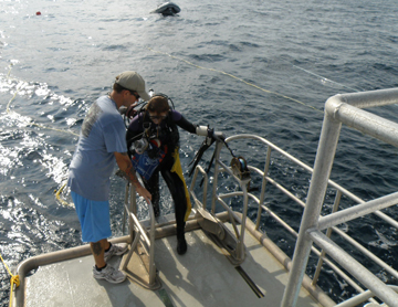 Diver boarding R/V MANTA from the starboard dive platform.