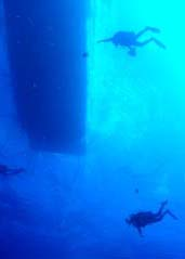 Looking up at scuba divers swimming under a boat hull.