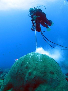 Diver using a drilling a core from a large coral head underwater.