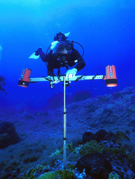 Diver positioning a metal t-frame on the reef to take a photograph