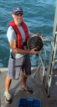 A man holds a Kemp's Ridley prior to release