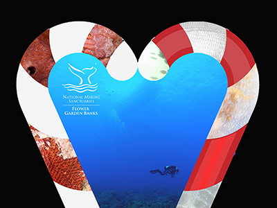Two candy canes make a heart shape around a photo of a diver above the reef