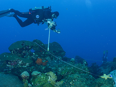 Diver using a t-frame camera mount to photograph a station on the reef