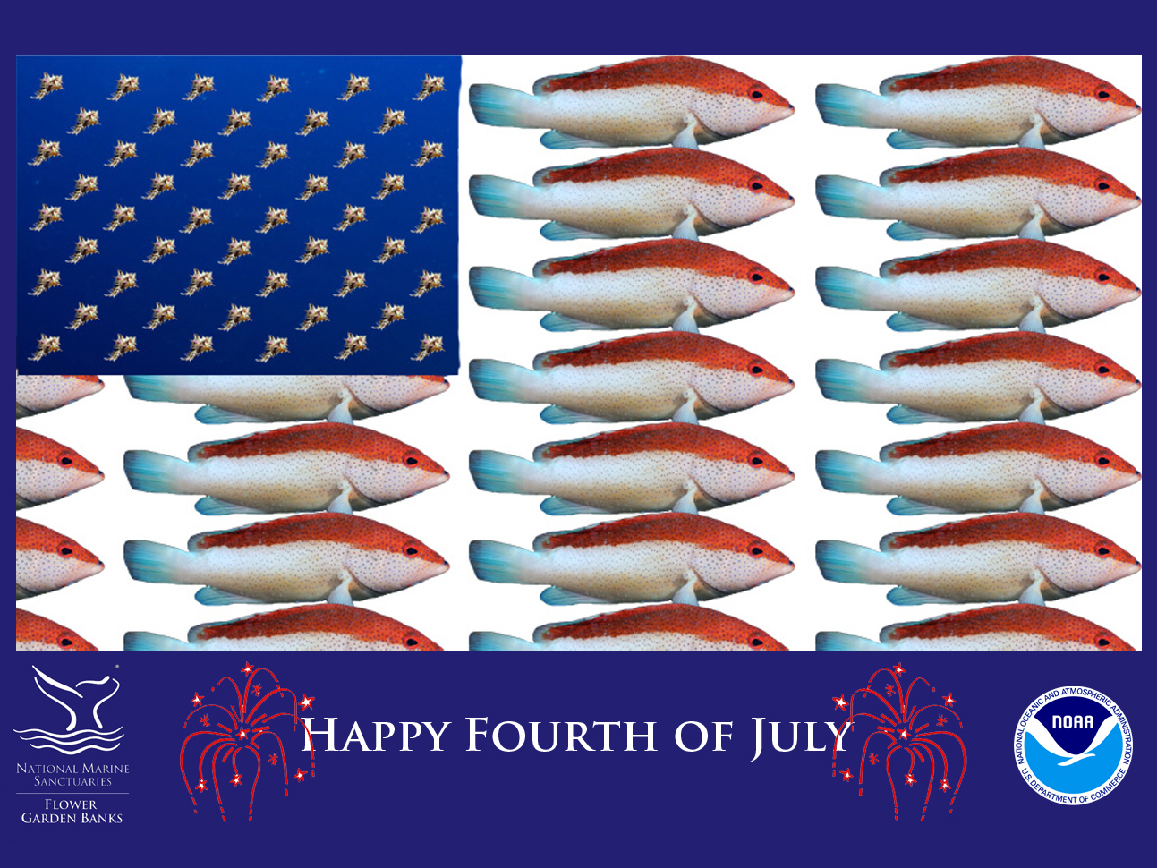 A United States flag image made using red and white fish for the stripes and murex shells for the stars.