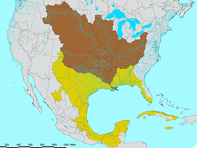 Map showing the Gulf of Mexico watershed spread across the central part of North American and part of Cuba