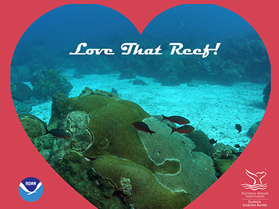 A red background with a heart-shaped image of the reef in the middle with the phrase Love That Reef