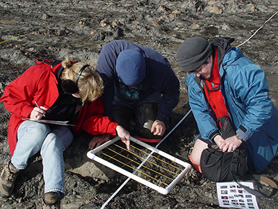 Three teachers looking at a quadrat along a transect on a beach