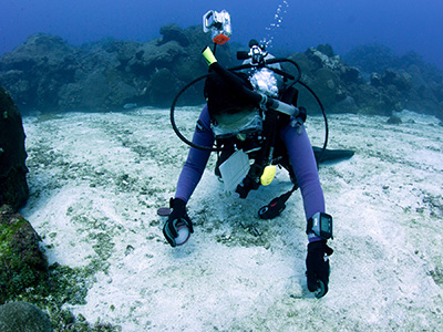 A diver scooping up a sediment sample from a sand flat in the sanctuary