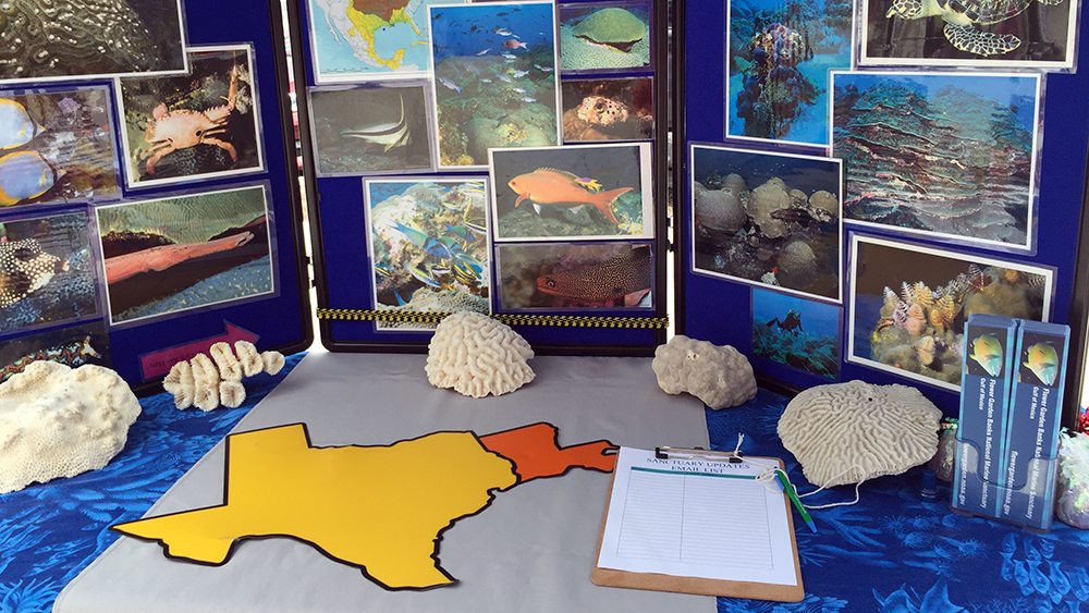 A table top display about the sanctuary with pieces of coral on display