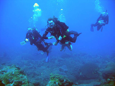 Three scuba divers swimming above a reef