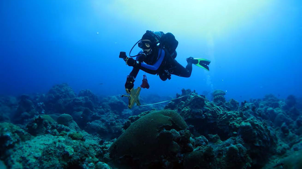 Diver following a compass heading while laying a transect on the reef