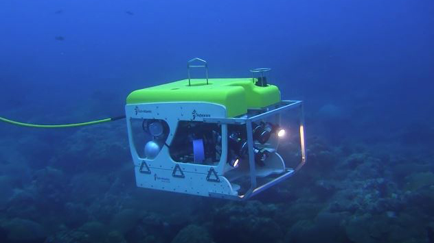 A remotely operated vehicle moving above a reef
